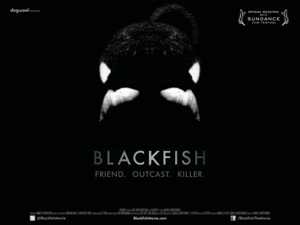 Blackfish_